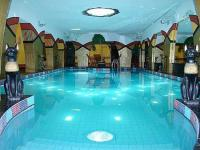 Swimming pool Janus Boutique Hotel in Siofok